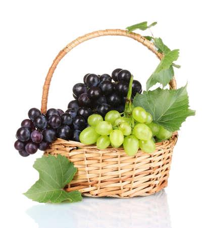 白で隔離されるバスケットで熟した赤いブドウ