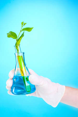 test tube with plants and hand on blue background photo