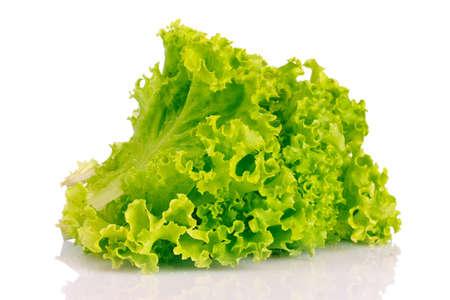 lettuce isolated on white Stock Photo - 10670468
