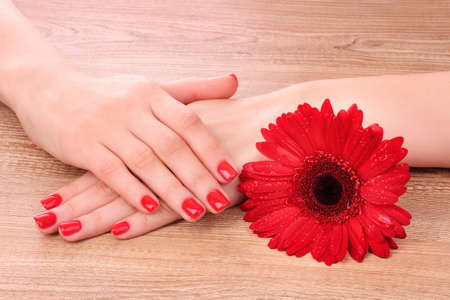 beautiful red manicure and  flower on a wooden background photo