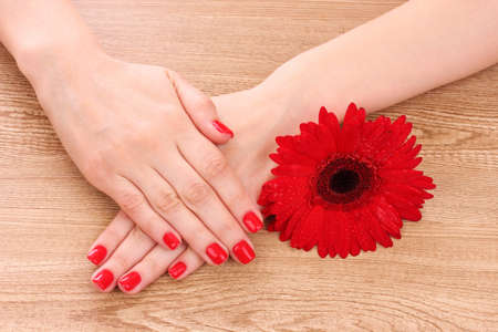 beautiful red manicure and  flower on a wooden background Stock Photo - 10869510
