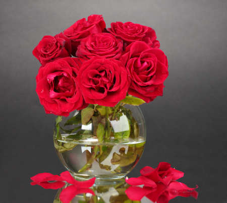 Beautiful red roses in vase on gray background photo