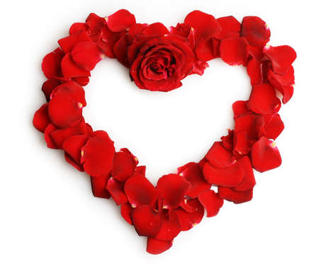 beautiful heart of red rose petals isolated on white photo