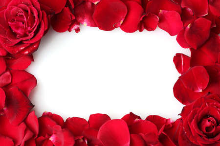 frame of beautiful petals of red roses photo