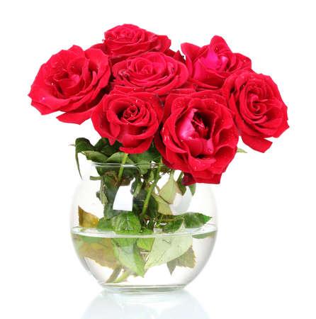 rosas rojas: Hermosas rosas rojas en un florero aisladas en blanco