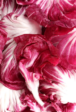 Red cabbage leaves closeup photo