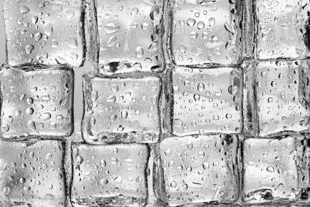 Melting ice cubes closeup photo