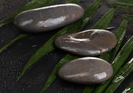 spa stones with water drops on palm leaf on black background photo