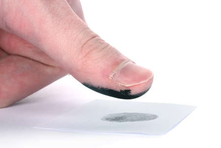 thumb print: Fingerprint isolated on white
