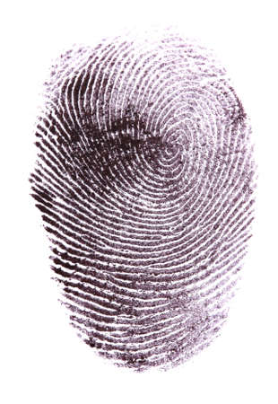 Fingerprint isolated on white photo