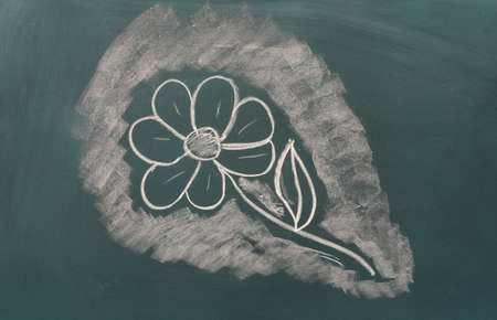 Blackboard with drawing flower closeup photo