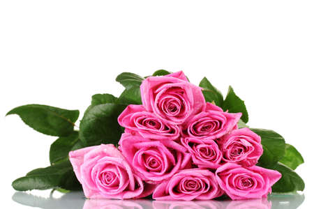 Many pink roses isolated on white photo