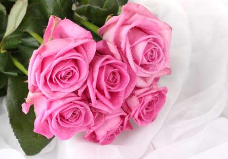 Muchas rosas rosadas en un paño blanco aislado en blanco