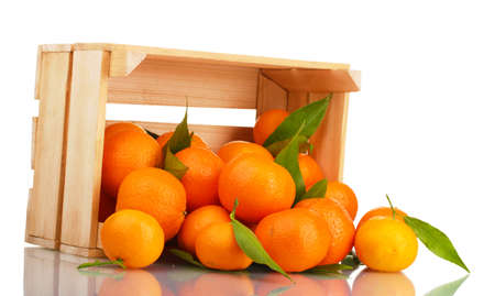 Ripe tasty tangerines with leaves in wooden box dropped isolated on white photo