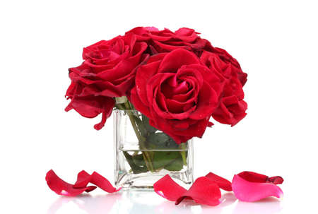 large group of objects: beautiful bouquet of red roses in vase isolated on white