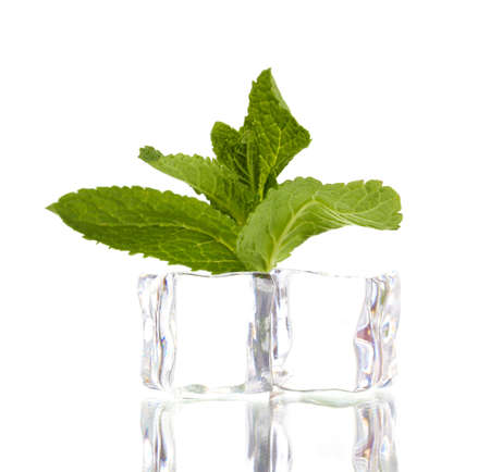 Fresh mint leaf and ice cubes isolated on white photo