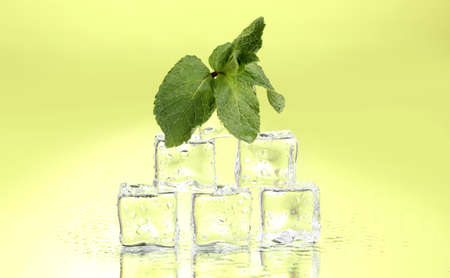 Fresh mint leaf and ice cubes with droplets on green background photo