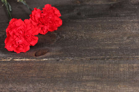 woden: Two carnation on woden background Stock Photo