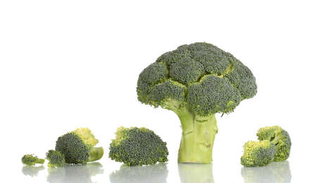 Fresh broccoli in line isolated on white Stock Photo - 12549873
