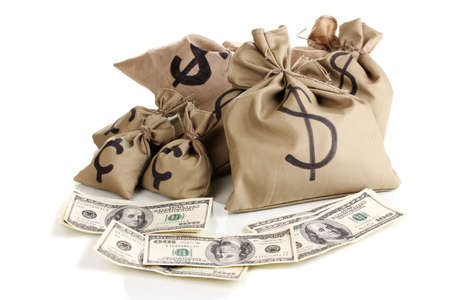 Bags with money isolated on white photo