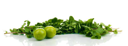 mentha: Fresh mint and limes isolated on white Stock Photo