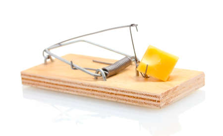 Mousetrap with piece of cheese isolated on white photo