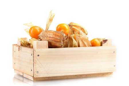 Physalis in crate isolated on white photo