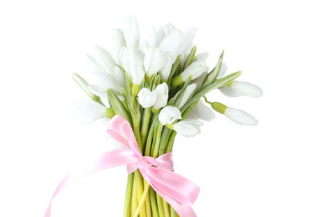 snowdrop: beautiful bouquet of snowdrops isolated on white
