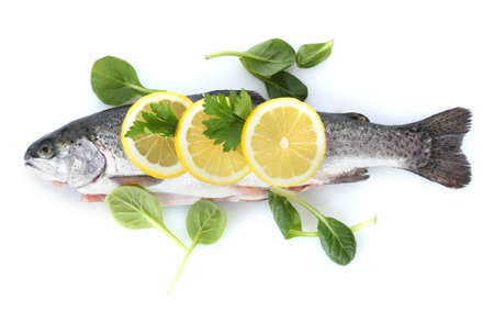 cichlidae: Fresh fish with lemon and parsley isolated on white