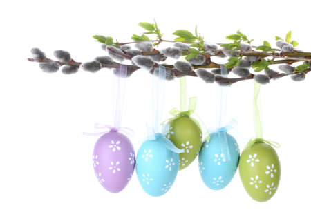 pussy-willow twigs with Easter eggs isolated on white photo