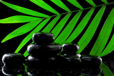 Spa stones with drops and green palm leaf on black background photo