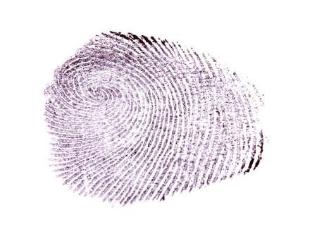 Fingerprint isolated on white photo