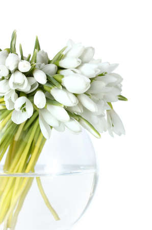 beautiful bouquet of snowdrops in transparent vase isolated on white photo