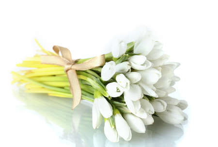 beautiful bouquet of snowdrops isolated on white photo