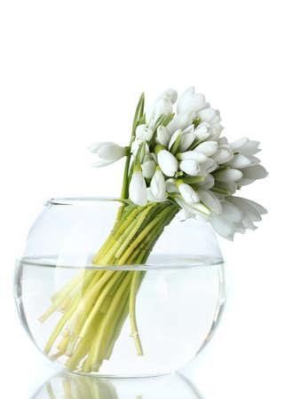 bellissimo mazzo di bucaneve in vaso trasparente isolato su bianco photo