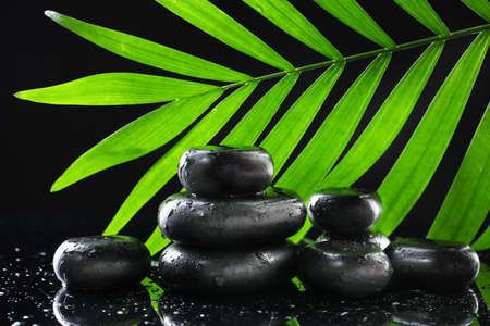 Spa stones with drops and green palm leaf on black background Stock Photo - 13356214