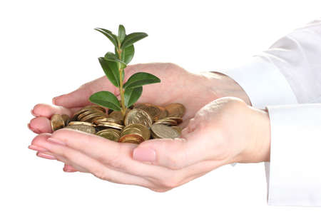Woman hands with coins and plant isolated on white photo