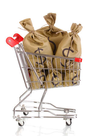 Bags with money in trolley isolated on white photo
