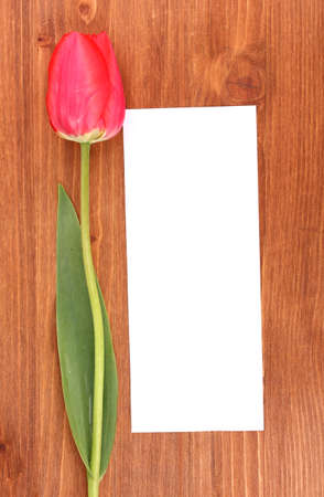 Beautiful tulip and card on wooden background photo