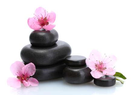 Spa stones and pink sakura flowers isolated on white Stock Photo - 13521256