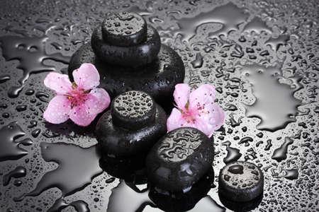 Spa pietre con gocce e fiori rosa sakura su sfondo grigio