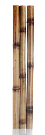 dry bamboo sticks isolated on white photo