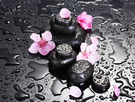 Spa stones with drops and pink sakura flowers on grey background Stock Photo - 13518983