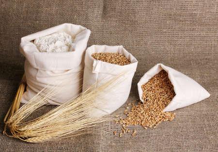 gunny: Flour and wheat grain on sackcloth