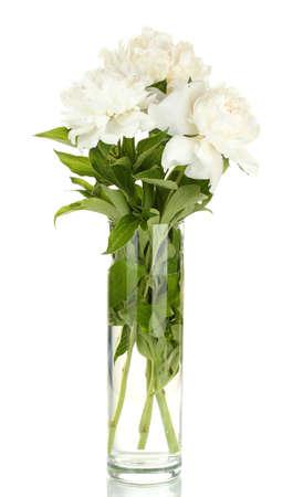 birthday flowers: mooie witte pioenrozen in een glazen vaas met strik op wit wordt geïsoleerd Stockfoto