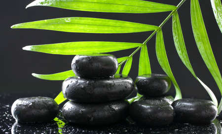 Spa stones with drops and green palm leaf on black background Stock Photo - 13649365