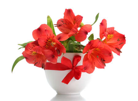 alstroemeria red flowers in vase isolated on white Stock Photo - 13647983