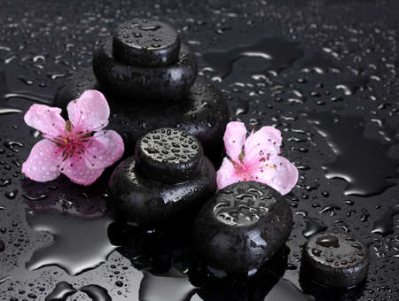 Spa stones with drops and pink sakura flowers on grey background  Stock Photo - 13648982
