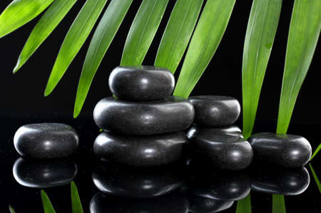 Spa stones and green palm leaf on black background photo