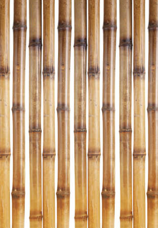 dry bamboo sticks isolated on white Stock Photo - 13689123